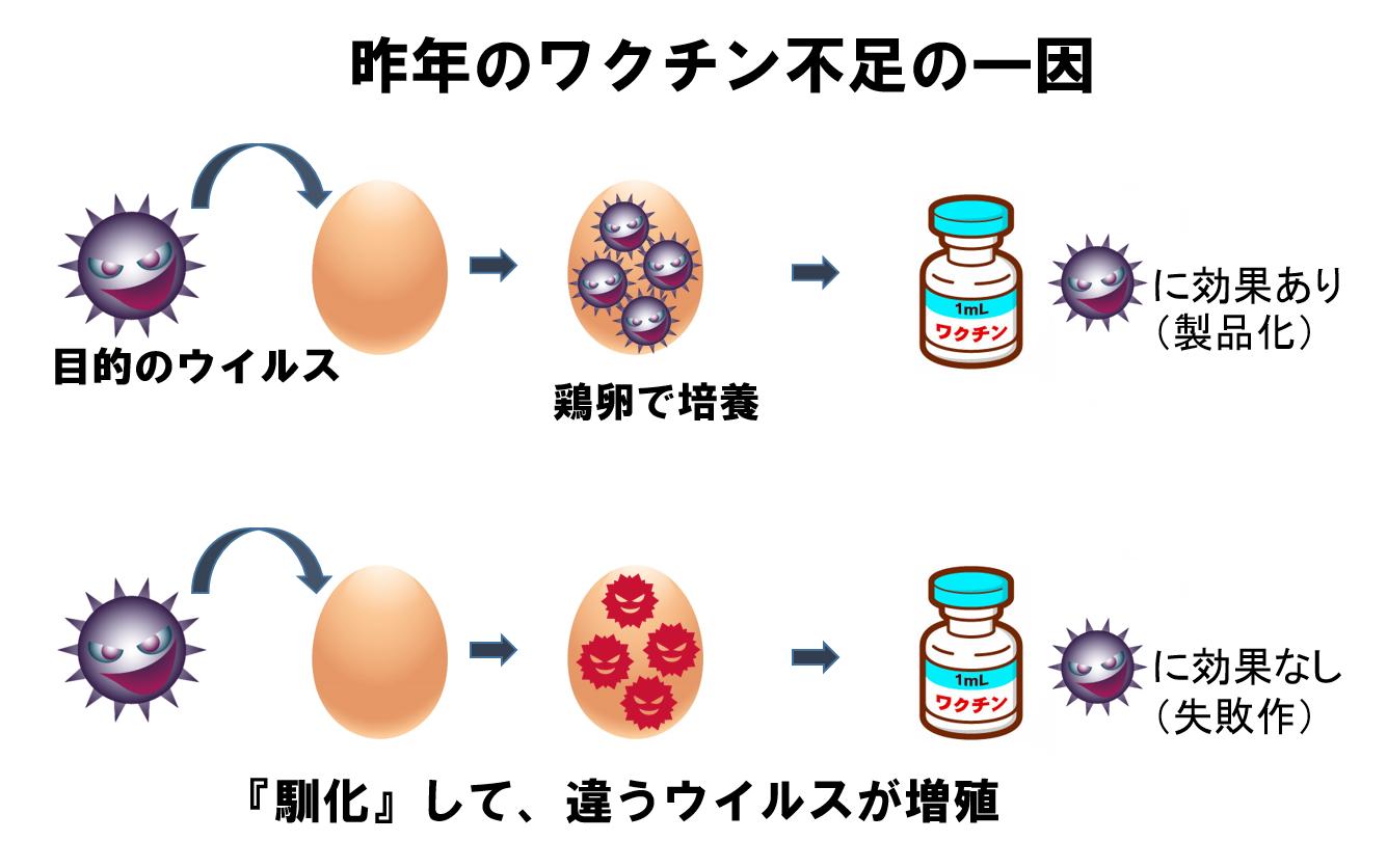 インフルエンザ 予防 接種 効果